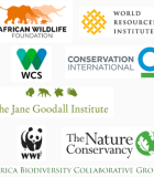 Africa Biodiversity Collaborative Group (ABCG) Logos
