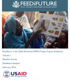 Resilience in the Sahel-Enhanced (RISE) Project Impact Evaluation, Volume 1 – Baseline Survey, Resilience Analysis